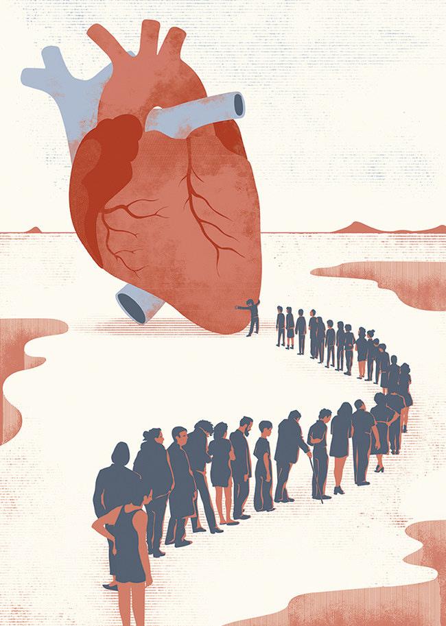 ARcardiogramas-devocion