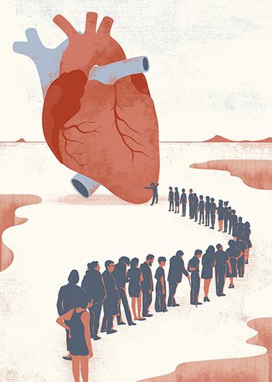 cardiogramas-devocion